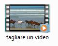 Publish Video Con Proshow 5