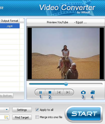 Capture video pictures
